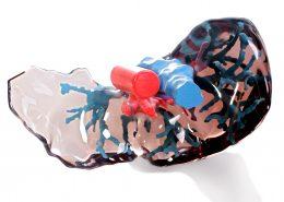3D Print Karaciğer